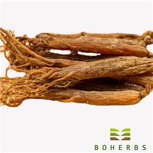 Dried Red Ginseng Root