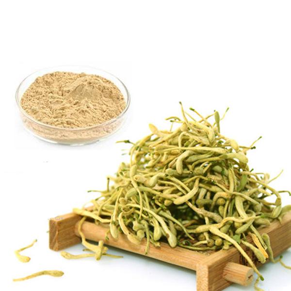 Honeysuckle Extract Supplier