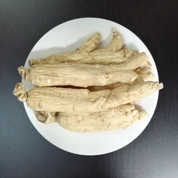 Ginseng Root For Sale
