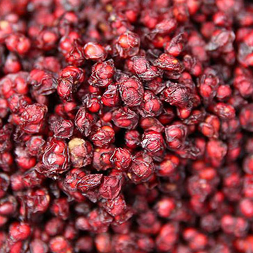 Schisandra Anti - Oxidation And Anti - Aging Effect