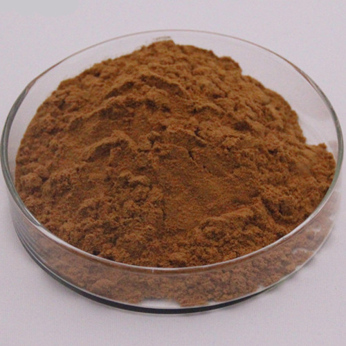 Natural Plant Extract Powder