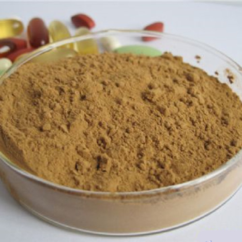 Hawthorn Fruits Extract