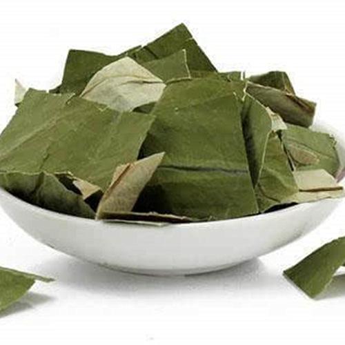 Lotus Leaf Supplier