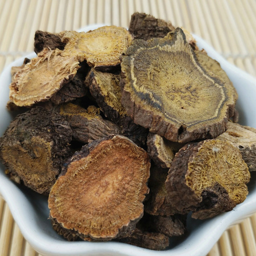 Rheum officinale Root