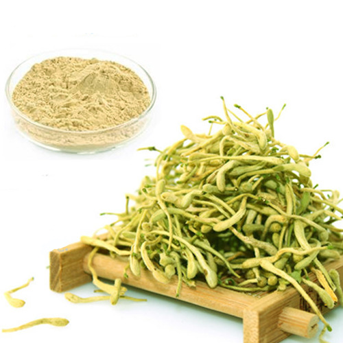 Honeysuckle Extract Manufacturer