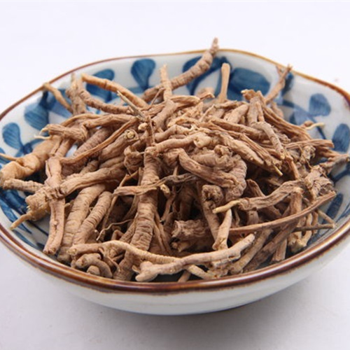 Polygonia Root