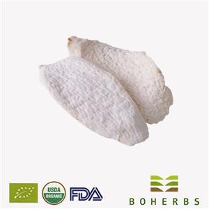 Chinese Yam Certified Organic