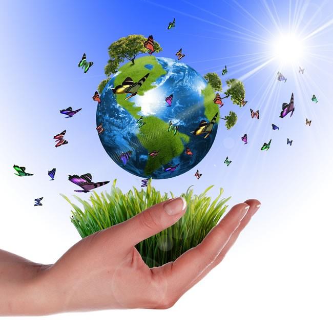 पर्यावरण के सतत विकास को सुरक्षित रखें