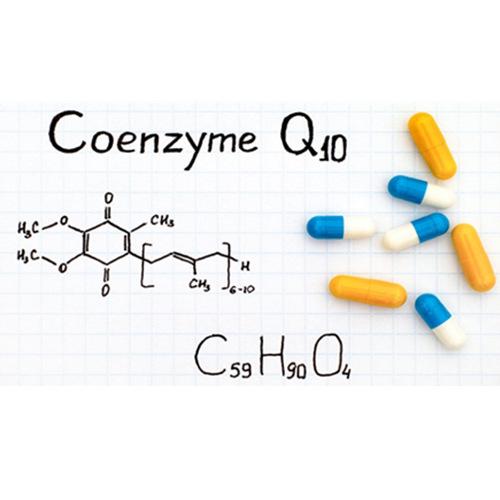Supply Coenzyme Q10