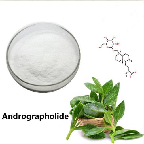 Andrographolide 98%