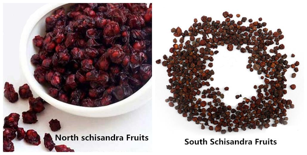 Schisandra Chinensis Fruits