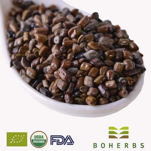 Cassia Seeds Certified Organic Factory