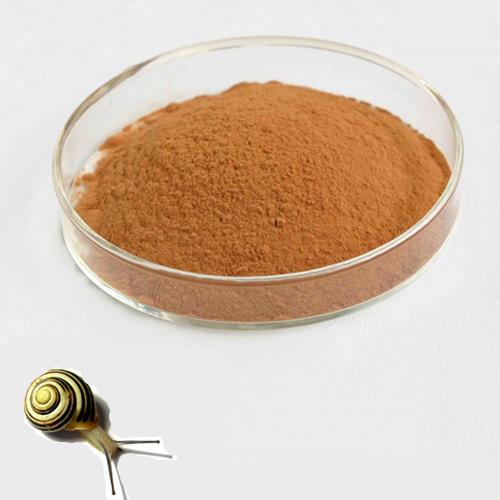 Snail Extract Powder