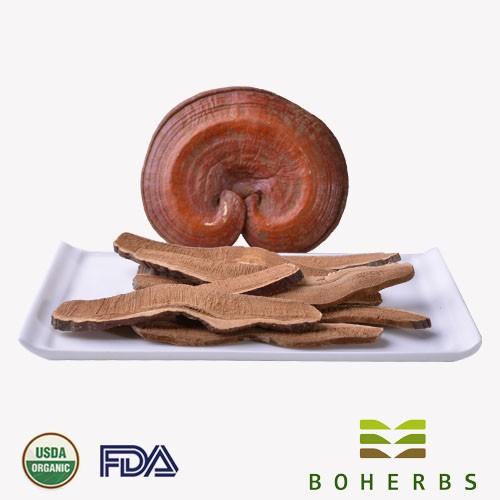 Reishi Mushroom Certified Organic Manufacturers, Reishi Mushroom Certified Organic Factory, Supply Reishi Mushroom Certified Organic