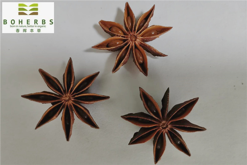 Star Anise Organic