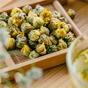 The difference between chrysanthemum flower and chrysanthemum buds