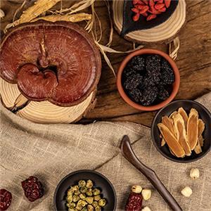 Harvest Season of Chinese Medicinal Herbs