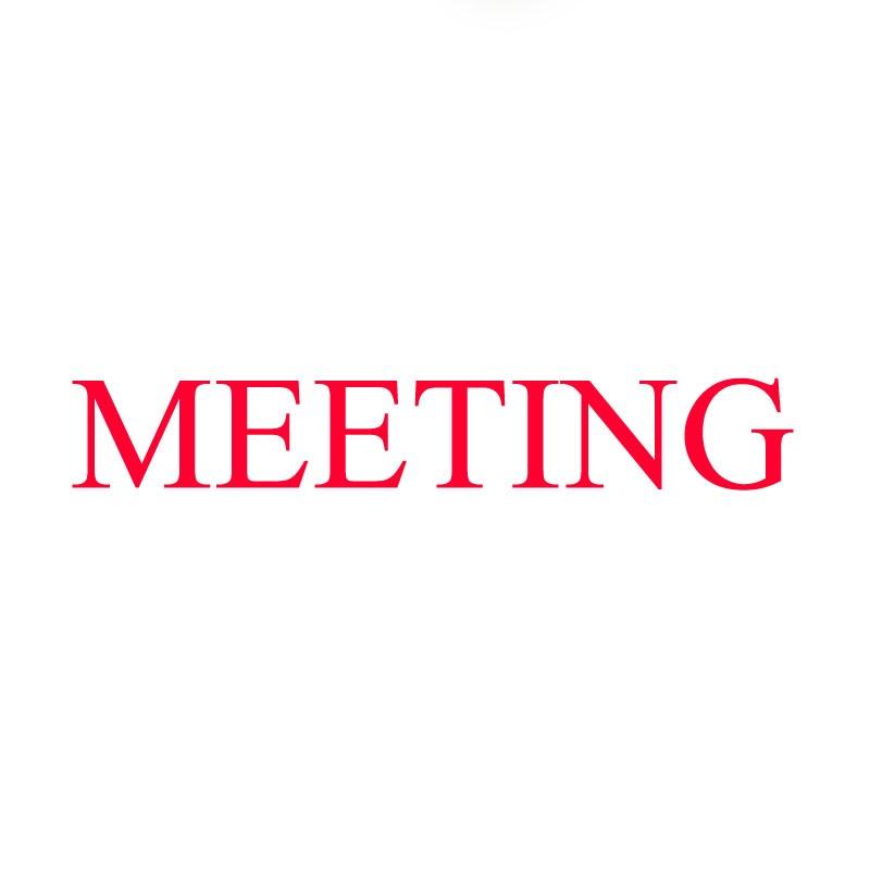 Meeting Plan