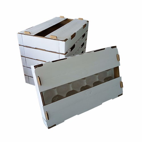Kiwifruit Box Manufacturers, Kiwifruit Box Factory, Kiwifruit Box