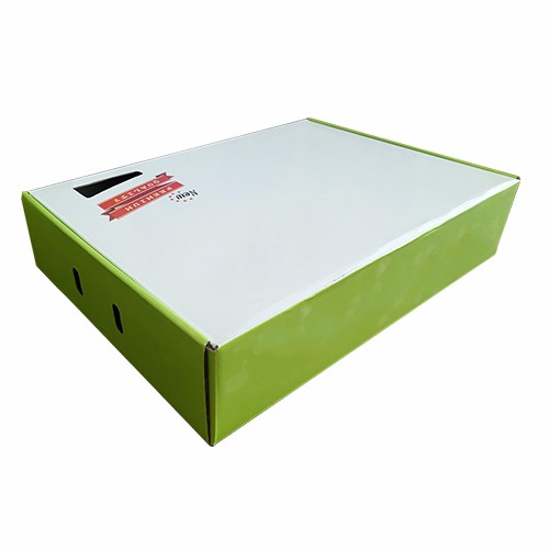Flap Tuck Top Box