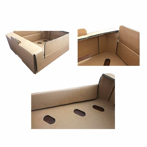 Fruit Packaging Box Manufacturers, Fruit Packaging Box Factory, Fruit Packaging Box