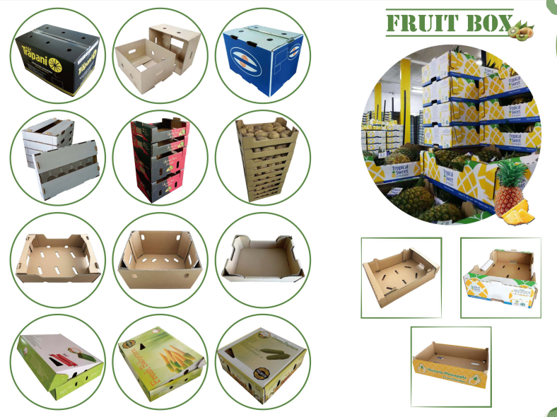 Fruit Packaging Boxes