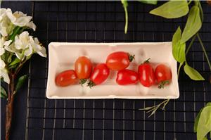 Paper Pulp Tray for Fruit and Vegetable