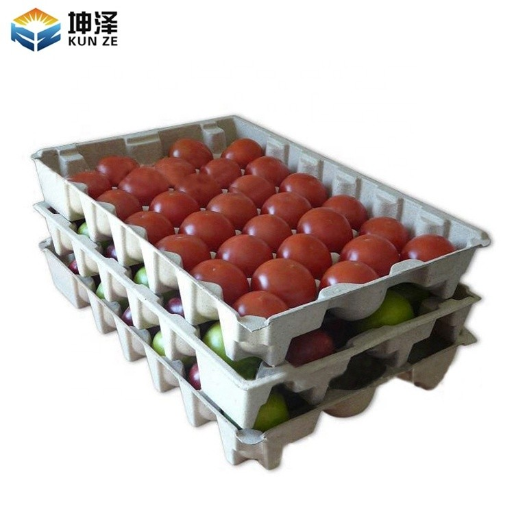 Vegetable Packaging Tray