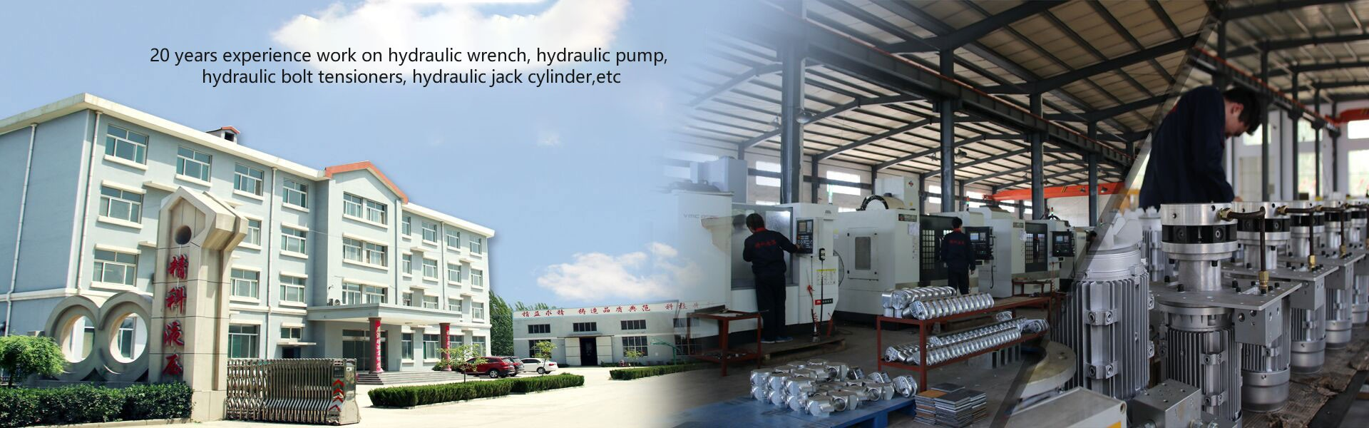 Supply Hydraulic Pump Customized