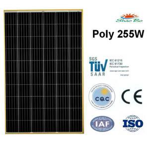 255W Poly Solar Module