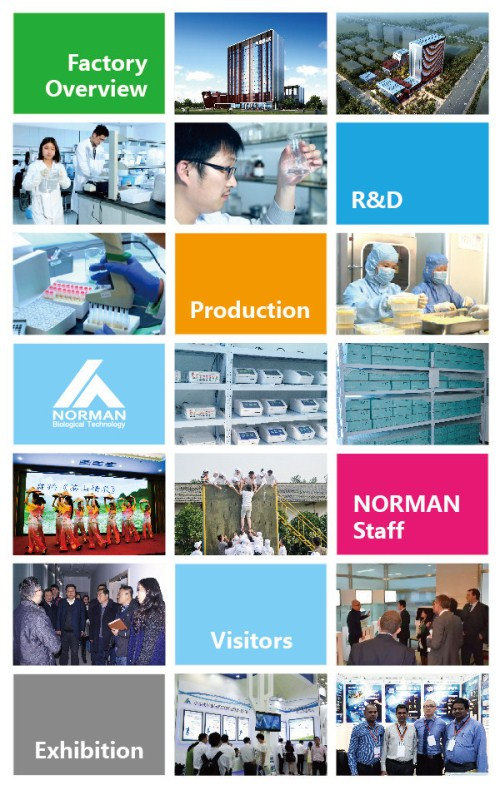 Nanjing-Norman-Biological-Technology-Co-Ltd- (8)_副本.jpg