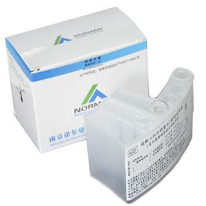 Thyroid Total Thyroxine Chemiluminescence Immunoassay Kit