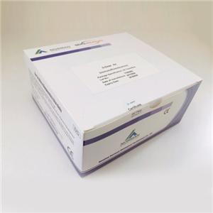Diagnosis of Ck-MB Disease Prediction Poct Testing Kits