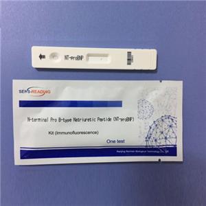 Cardiac Rapid Read Nt-Probnp Test Kits For Poct