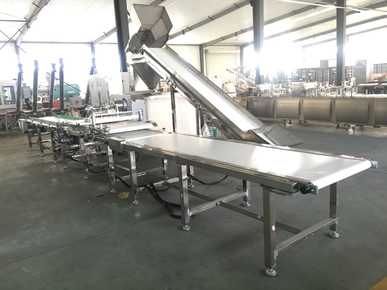 meat strip machine with auto tray loader and cutter