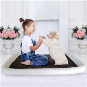 애완 동물 용품 상자 침대 고양이 매트 개 매트