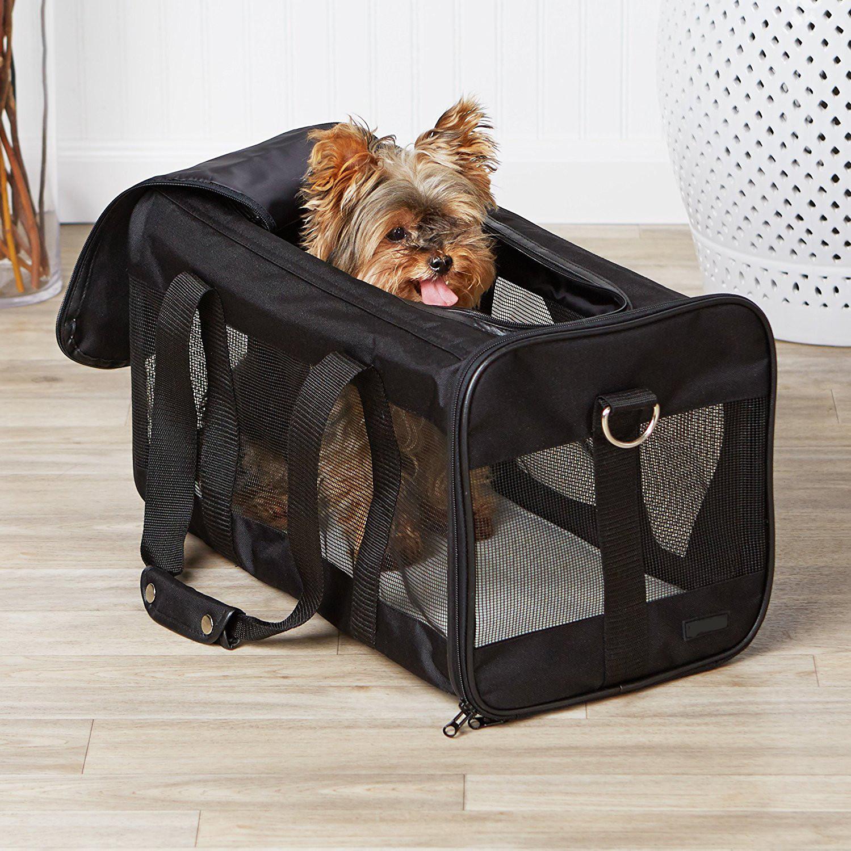 주문 항공사가 고양이 직업 애완 동물 여행 캐리어 를 승인했습니다.,항공사가 고양이 직업 애완 동물 여행 캐리어 를 승인했습니다. 가격,항공사가 고양이 직업 애완 동물 여행 캐리어 를 승인했습니다. 브랜드,항공사가 고양이 직업 애완 동물 여행 캐리어 를 승인했습니다. 제조업체,항공사가 고양이 직업 애완 동물 여행 캐리어 를 승인했습니다. 인용,항공사가 고양이 직업 애완 동물 여행 캐리어 를 승인했습니다. 회사,