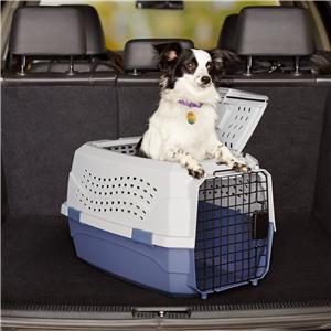 휴대용 접이식 애완 동물 여행 캐리어 상자