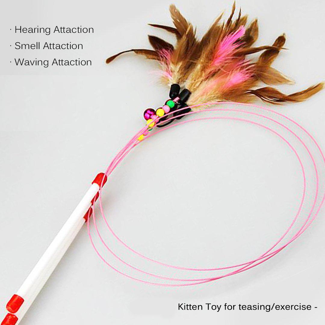 Cat Teaser Feather Teaser Wand