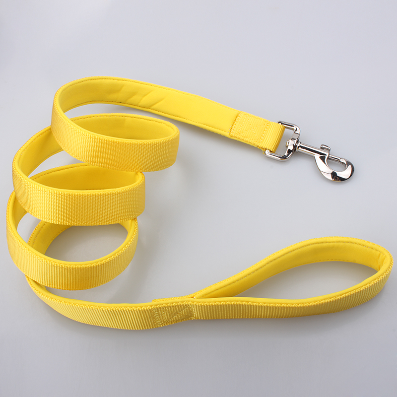 dog-leash-padded-14.jpg