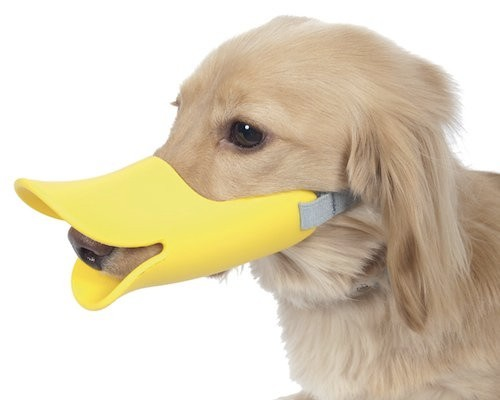 Dog Muzzle Manufacturers, Dog Muzzle Factory, Supply Dog Muzzle