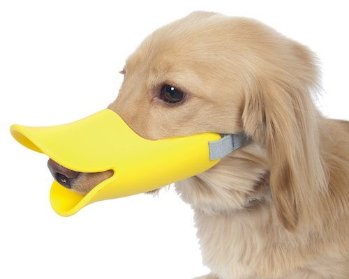 oppo-dog-muzzle-duck-bill-thumb.jpg