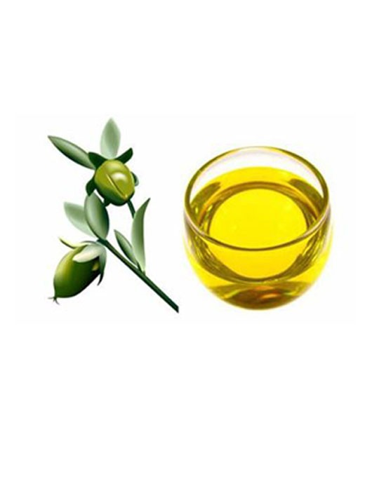 High quality Private Label Essential Jojoba Oil Manufacturer Quotes,China Private Label Essential Jojoba Oil Manufacturer Factory,Private Label Essential Jojoba Oil Manufacturer Purchasing