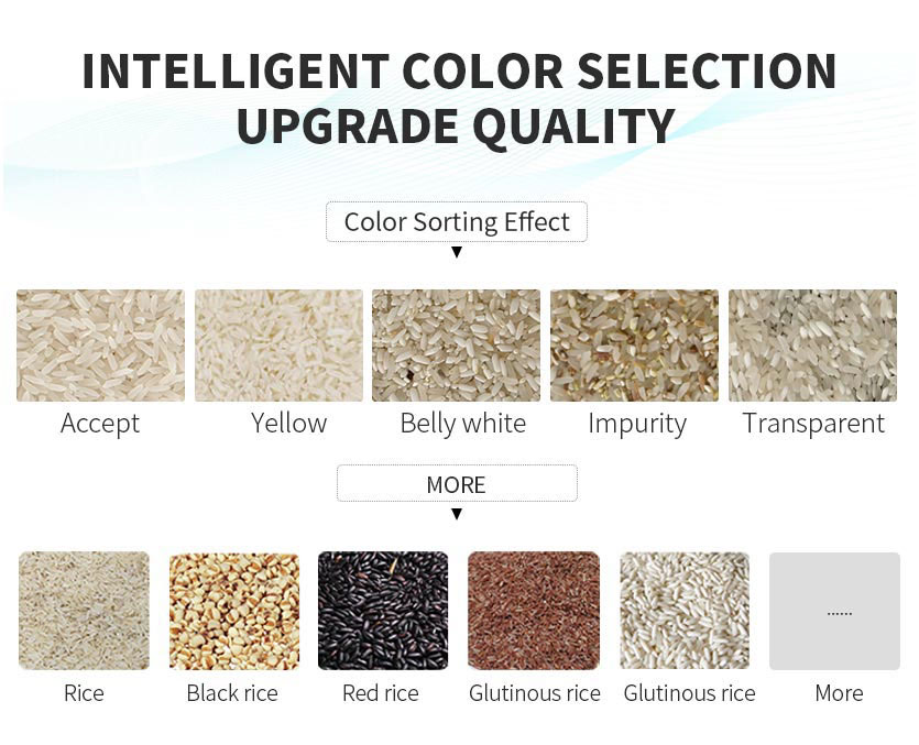 Mini rice color sorter manufacturer