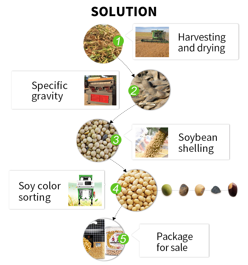 bean color sorter
