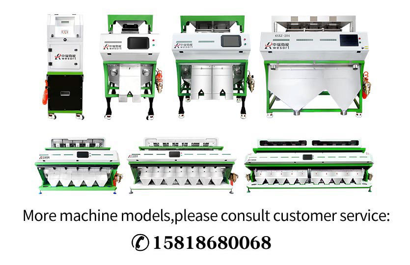 rice color sorter manufacturers