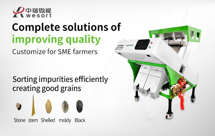 corn sorting machine