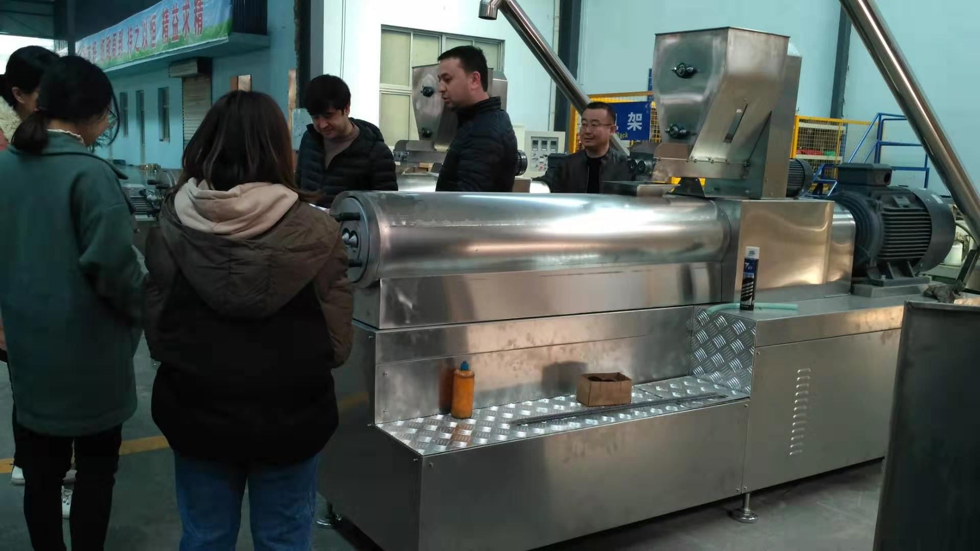 fried snacks food machine
