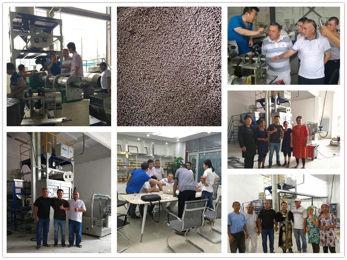 Debugging 1000 kg/hr fish feed production line in Uzbekistan