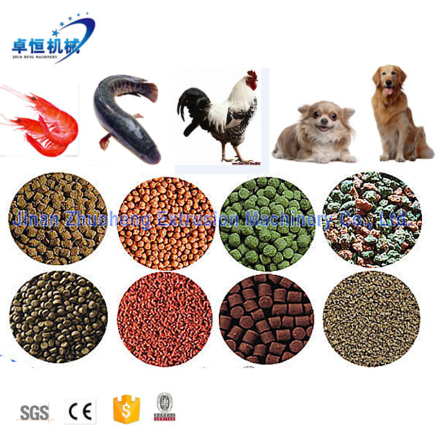 Top Quality fish feed machine